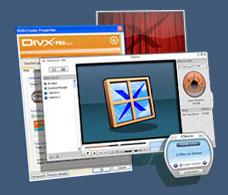 Click to Download the DivX Player